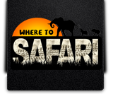 Where To Safari